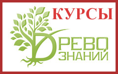 Центр Древо знаний